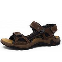 SALAMANDER - Dino - Sandale - braun