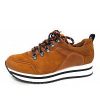 PAUL GREEN - Sneaker - cognac orange