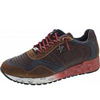 CETTI - Sneaker - tabaco brown