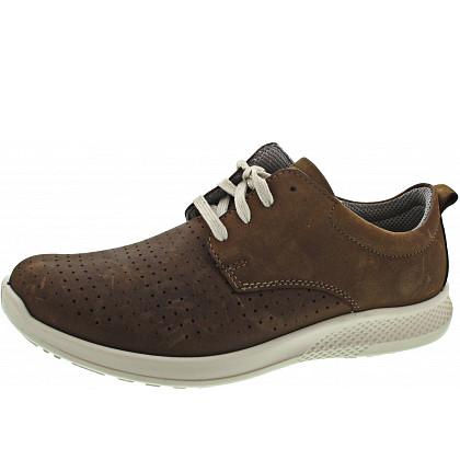 c550f8caed1 https   www.schuhwelt.de skechers-sneaker-52189-bbk-00078jm47k2j ...